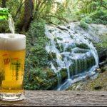 cerveja-waterfall